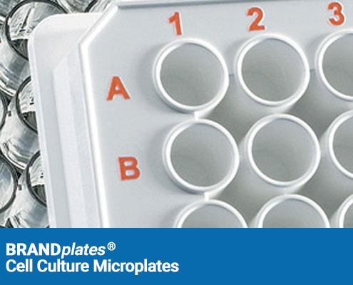 brandplates cell culture microplates